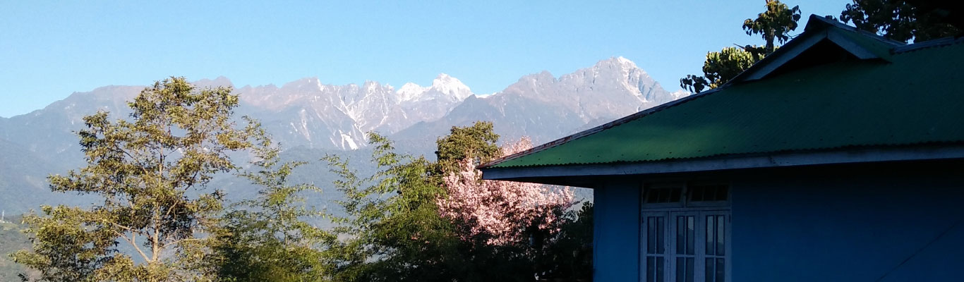 View of snow capped mountains from the homestay