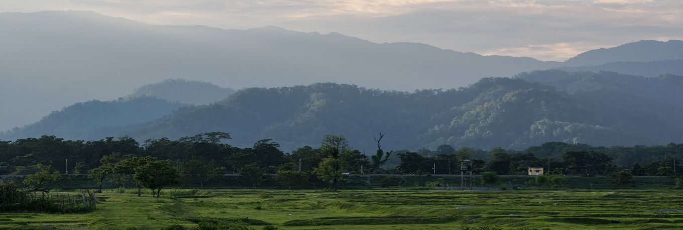 Forest and the Hills at Gulma