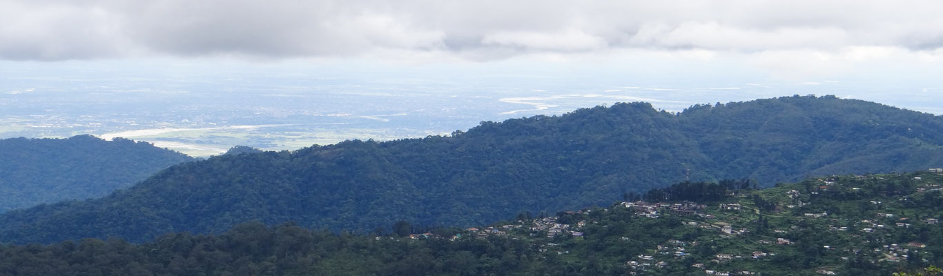 View of Siliguri town from the eco-resort