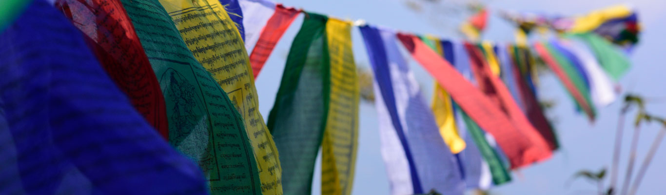 Tibetan prayer flags near Chatakpur view point