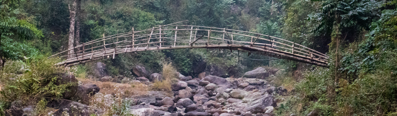 A Bamboo Bridge at Paren