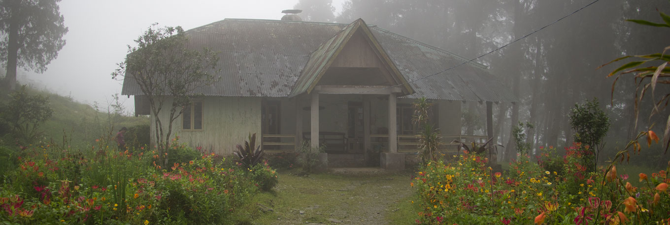Sittong Guest House of Cinchona Plantation